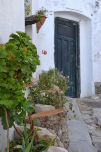 Blue door in perspective with green plants and flowers