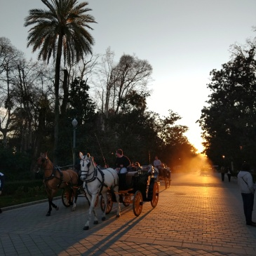 Horse and carriage in Maria Luisa Park in Seville. Photo by The Spanish Berry, all rights reserved.