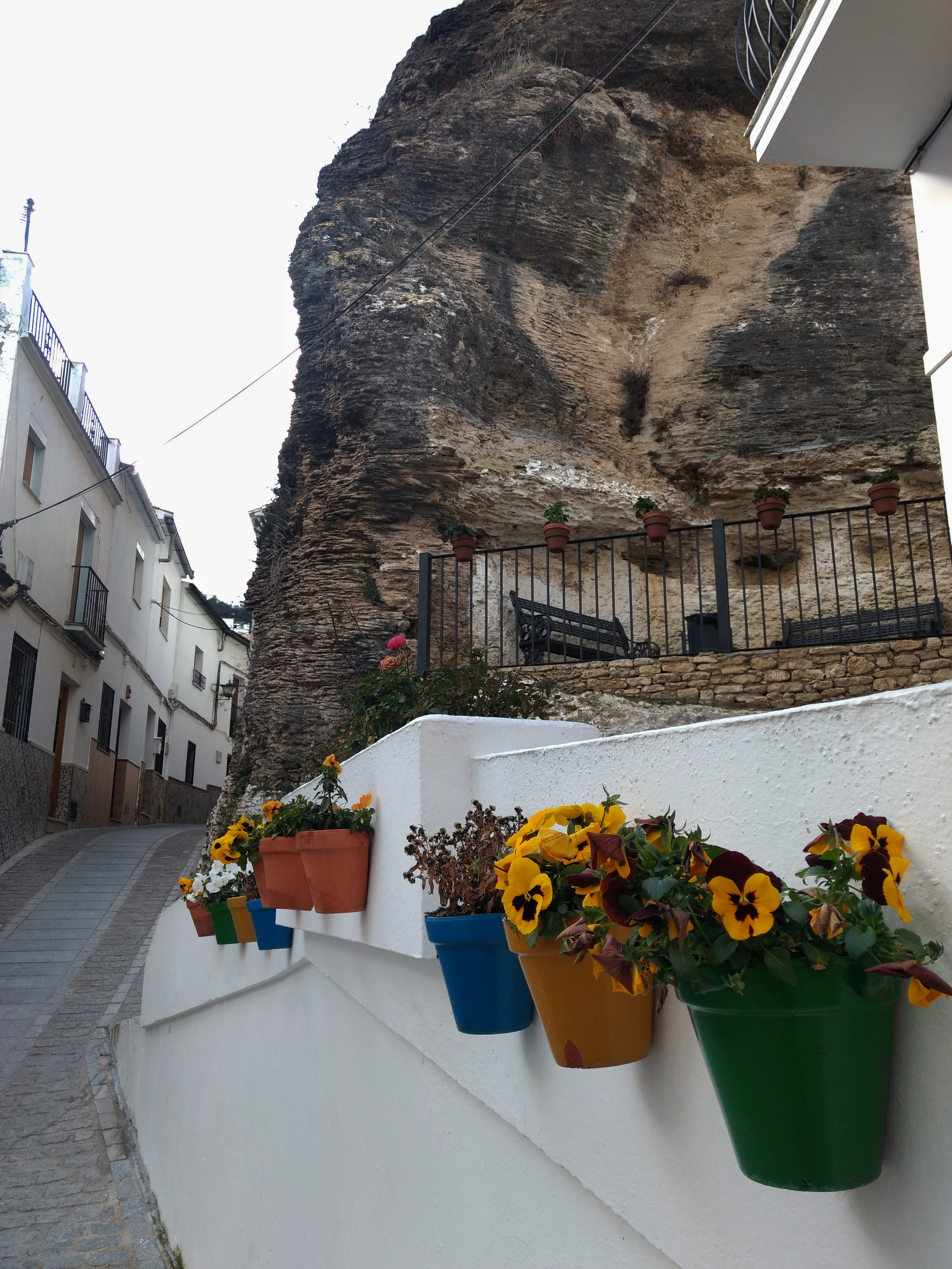 Flower pots in Setenil